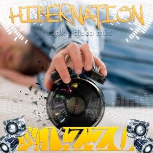wizzo_hibernation